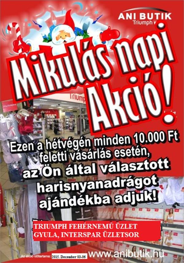 Mikulás napi akció2015600-800